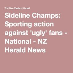 Sideline Champs: Sporting action against 'ugly' fans - National - NZ Herald News
