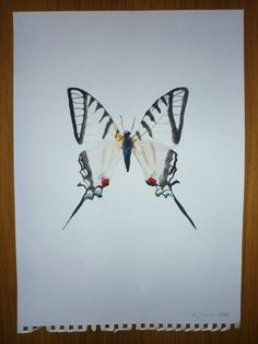 """1917 Vintage BUTTERFLY /""""ZEBRA SWALLOWTAIL/"""" WOW LOVELY COLOR ART PLATE Lithograph"""