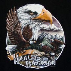 Harley Davidson Rochester MN T-shirt XL Minnesota Eagles Mountains Logo Black