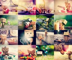 Danbo :'3  I love made collage.
