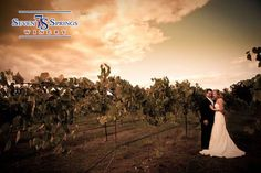 WINERY WEDDING WEDNESDAY If you've been dreaming of a winery wedding, NOW is the time to secure your date! Our Lake of the Ozarks winery boasts of incredible scenery, excellent venue space, and is also budget friendly? Visit our website to download our Bridal Packet.  http://sevenspringswinery.com/lakeozarkweddings.asp