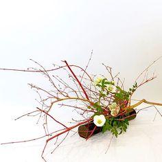 #ikebana #ikenobo #ikebanaclass #london #japaneseflowerarrangement #jiyuka #池坊#いけばな教室#ロンドン#自由花 #freestyle Arranged by Rie