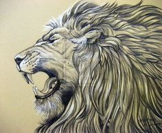 leones rugiendo - Buscar con Google