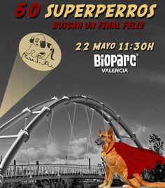 BIOPARC celebra el Día Internacional de la BIODIVERSIDAD y el 8º desfile de perros abandonados - http://www.valenciablog.com/bioparc-valencia-celebra-el-dia-internacional-de-la-biodiversidad-y-el-8o-desfile-de-perros-abandonados/
