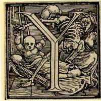 Holbein Alphabet 1526: Initial Y