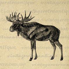 Printable Digital Scandinavian Elk Graphic Image Download Artwork Antique Clip Art Jpg Png Eps 18x18 HQ 300dpi No.2184 @ vintageretroantique.etsy.com #DigitalArt #Printable #Art #VintageRetroAntique #Digital #Clipart #Download