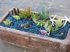 Fish Pond pot garden