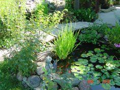 Small pond by gazebo with bridge over the pond