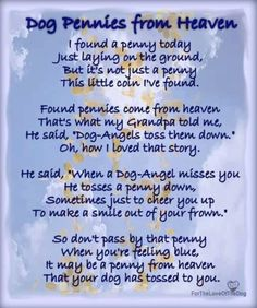 Dog Pennies From Heaven