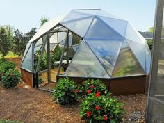 My Yard Goes Disney: Geodesic domed greenhouse featuring hydroponic growing system.