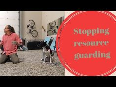 Teaching the Out Command, Life Saver for Dogs that Resource Guard - YouTube