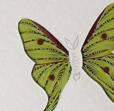 Hand Crafted Butterflies - Quilled Luna Moth Miniature Wall Art Framed by Quilling by Sandra White | CustomMade.com