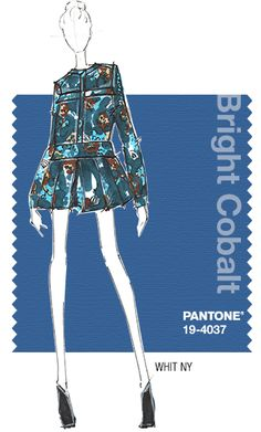 WHIT NY - PANTONE Color Bright Cobalt - Fall 2014 Pantone Fashion Color Report - Cool shades of Forest Green, Ice Blue and Misty Rose/Pale Cameo Pink are complemented by rich Burgundy and Copper