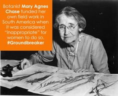 "Botanist Mary Agnes Chase funded hr field work in S-Am when it was ""inappropriate"" 4 women so Great Women, Amazing Women, Stem Fields, Rosie The Riveter, Stem Science, Women's History, Inspiring Women, Yesterday And Today, Famous Women"