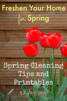 Freshen Your Home for the Warm Weather - Start fresh this spring with a deep cleaning of your home before school ends and the kids are home for the summer. It's easy to set up new cleaning routines for summer once your home is in order with everything clean and in its place.