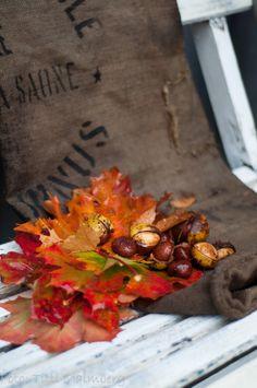 hwit blogg - autumn
