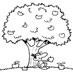 Apple Tree Color Page Coloring Pages Plate