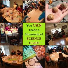 You Can Teach A Homeschool Science Class