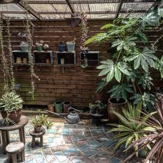 Bring Contrast Into Your Garden Design - Gardening Green Garden, Tropical Garden, Courtyard Design, Garden Design, Greenhouse Gardening, Texas Gardening, Garden Cafe, Interior Garden, Outdoor Living