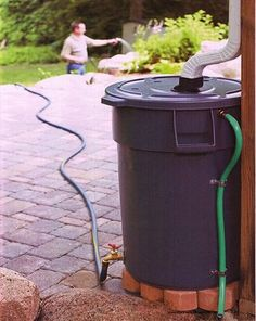 Place a barrel or a plastic drum near the downspout. Use the rain water later for watering your plants