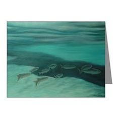 FISH OF SALT SPRINGS,FLORIDA Note Cards