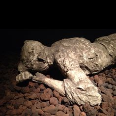 """Body cast from """"A Day In Pompeii Exhibit"""" at Museum of Science Boston"""
