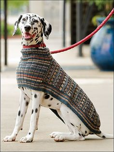 A poncho to keep your traveling companion warm throughout your travels or at home. Worked entirely in one piece starting at the collar, this is a quick to knit project. Knit Dog Sweater, Crochet Dog Sweater Pattern, Large Dog Sweaters, Dog Coat Pattern, Pet Clothes, Crochet Dog Clothes, Dog Clothing, Dog Jumpers, Dog Jacket