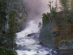 Firehole River Yellowstone National Park | Nature Scenes - Rivers and Creeks n° 1 (Fiumi e Insenature)
