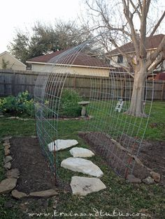 A DIY garden trellis creates a great place for plants to climb. #trainsandtutus #trellis #Garden_DIY this would also work with either chicken wire or hog wire, rolls range between $5 and $40 depending on height/length