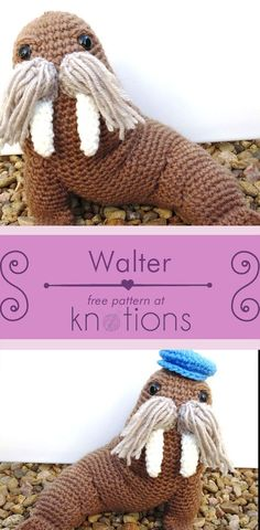Free crochet pattern for an amigurumi walrus with 2 different hats. Make Walter with one hat and then top him with the other hat for a different look!