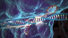 The Age of Gene Editing: Everything You Need To Know About CRISPR/Cas9 http://futurism.com/the-age-of-gene-editing-everything-you-need-to-know-about-crisprcas9/?utm_campaign=coschedule&utm_source=pinterest&utm_medium=Futurism&utm_content=The%20Age%20of%20Gene%20Editing%3A%20Everything%20You%20Need%20To%20Know%20About%20CRISPR%2FCas9
