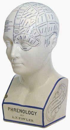 Google Image Result for http://4.bp.blogspot.com/-FSnoqPUi0wI/UDzflcXFxJI/AAAAAAAACfI/w23NO5nmtJU/s1600/phrenology_bust_L_N__Fowler_c__1870.jpg
