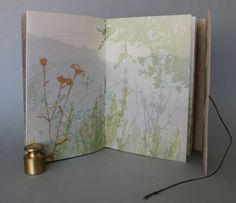 Rebecca Chamlee's gorgeous botanical prints in Where Stucco Meets Chaparral