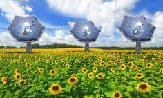 IBM's New Sunflower-Shaped Solar Concentrators Produce Energy AND Fresh Water! | Inhabitat - Sustainable Design Innovation, Eco Architecture, Green Building