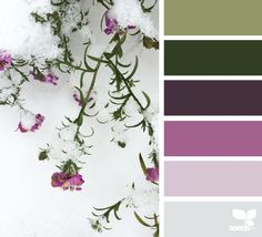 { Frosted Flora } image via: @designseeds| featured in the Seasonal Atlas | Design Seeds X Archroma