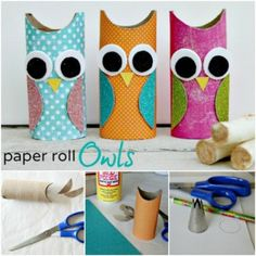 Paper-Roll-Owls-F