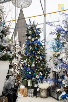 #bluechristmasdecor #silverchristmasdecor #woodlandchristmas #christmas #christmastime #christmasseason #christmasvibes #christmasspirit #christmasdecorating #christmasdecor #christmasdecorations #christmashome #christmasinspiration #christmasinspo #vermeersgardencentre