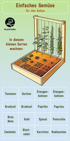 Planting raised beds: planting plan, mixed culture & green manuring - Simple vegetables for growing: in this small garden different plants can grow, e. Plants For Raised Beds, Raised Garden Beds, Garden Types, Planting Vegetables, Growing Vegetables, Small Garden For Vegetables, Vegetable Garden, Amazing Gardens, Beautiful Gardens