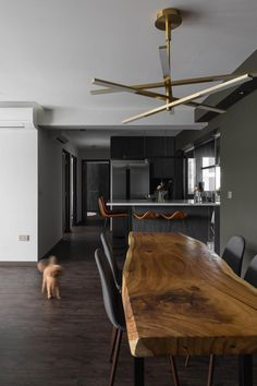 10 Dark Homes That Nail the Luxe and Cosy Look Effortlessly Hall Interior, Interior Design, Mansion Interior, Dark Home Decor, Dark Living Rooms, Dark House, Tiny Apartments, Condo Decorating, Dark Interiors