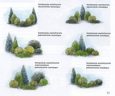 Landscaping near me, landscaping in Tnau, while . - Landscaping near me, landscaping in Tnau, while … - Landscaping Near Me, Privacy Landscaping, Garden Landscaping, Landscaping Ideas, Arborvitae Landscaping, Garden Pool, Corner Landscaping, Yard Privacy, Garden Hedges