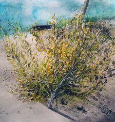 Tra un ulivo e l'altro, Agriturismo Bonprà   -   acquerello e gessetti