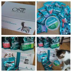 Paczka Ambasadora w kampanii @PurinaONEcat z @Rekomendujto :) #purinaone #3tygodniezone #widoczniedobre #rekomendujto #koty #cats #wyzwanie