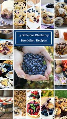 15 Blueberry Breakfast Recipes that will make any morning much better!