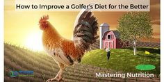 How to Improve a Golfer's Diet for the Better – Mastering Nutrition.  Golf fitness is more than exercises, mobility, flexibility, strength, and power. You need to eat the proper foods not only while you exercise but before and during your rounds. Fitness starts with food.