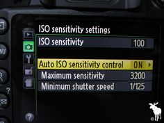 Nikon D3200 ISO Sensitivity Settings