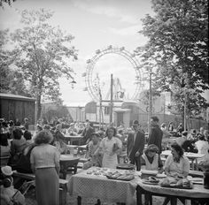 Vienna Austria, Old Photos, American History, Street View, City, Vintage, Spring, Concerts, Vintage Photos