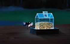 Billedresultat for foderbræt til fugle