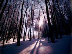 Winter:3