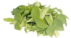 For Hair Growth:.Curry leaves are not only the important ingredients in Indian cuisines, but also highly beneficial herbs for healthy & shiny hair. Know the benefits of curry leaves for hair. Natural Hair Growth, Natural Hair Styles, Natural Beauty, Gel Aloe, Luxury Hair, Hair Loss Remedies, Prevent Hair Loss, Hair Loss Treatment, Hair Treatments