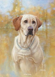 Innis Yellow Labrador <br>Canvas Giclee 14 x 16